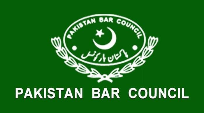 ججز تعیناتی کے طریقہ کار پر تحفظات ہیں، وائس چیئرمین پاکستان بار کونسل