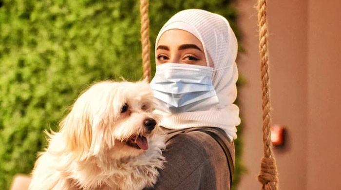 سعودی عرب میں کتوں کیلئے کیفے بھی کھل گیا