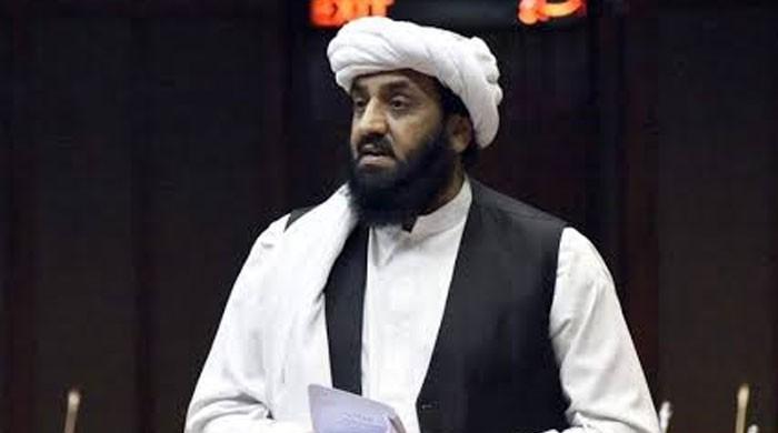 حافظ حمداللہ کی شہریت کی منسوخی کیخلاف درخواست پر فیصلہ محفوظ