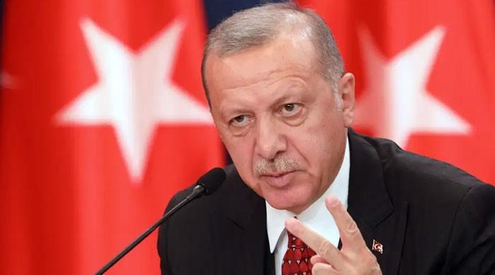 ترکی نے  فرانس میں ہونے والے چاقو حملے کی مذمت کردی