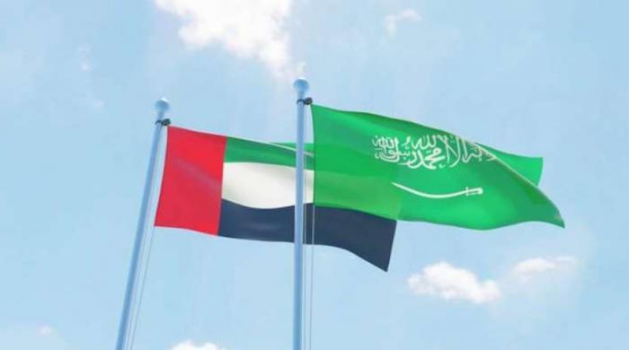 سعودی عرب اور یو اے ای ناراض کیوں؟