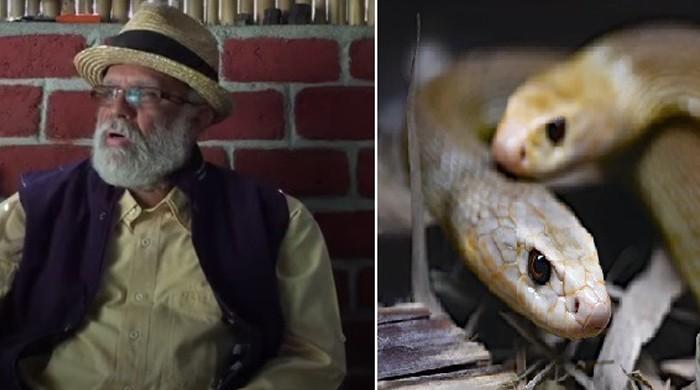 72 گھنٹے زہریلے سانپوں میں گزارنے والے شخص کی کہانی