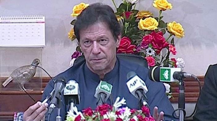 ملک میں قبضہ گروپ ہیں، سمندر پار پاکستانیوں کی جائیدادوں پر قبضے ہوجاتے ہیں، وزیراعظم
