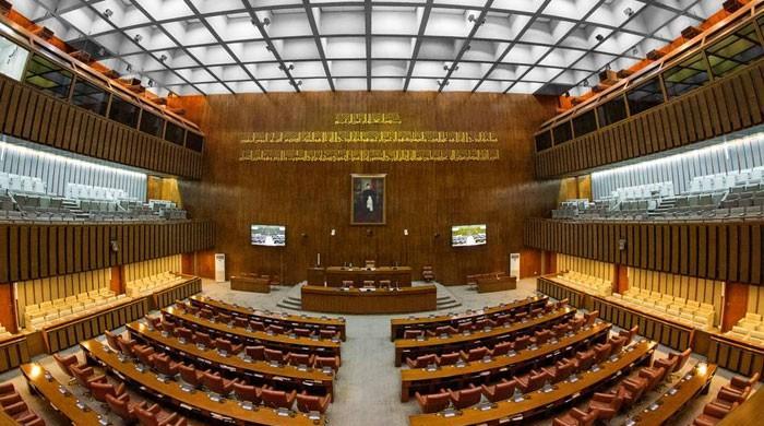 پنجاب سے سینیٹ کی ٹیکنوکریٹ اور خواتین کی 2،2 نشستوں پر امیدوار بلامقابلہ منتخب