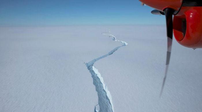 انٹارکٹیکا میں نیویارک کے رقبے جتنا برفانی تودہ ٹوٹ کر الگ ہوگیا