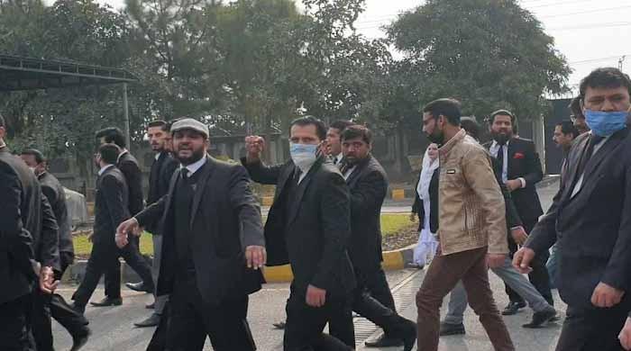 اسلام آباد ہائیکورٹ حملہ کیس: مزید 6 وکلا کی ضمانتیں منظور، ایک کی مسترد