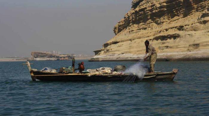 کراچی میں سخت گرمی کے باعث مچھلیاں اور جھینگے  سطح سمندر  پر  آگئے