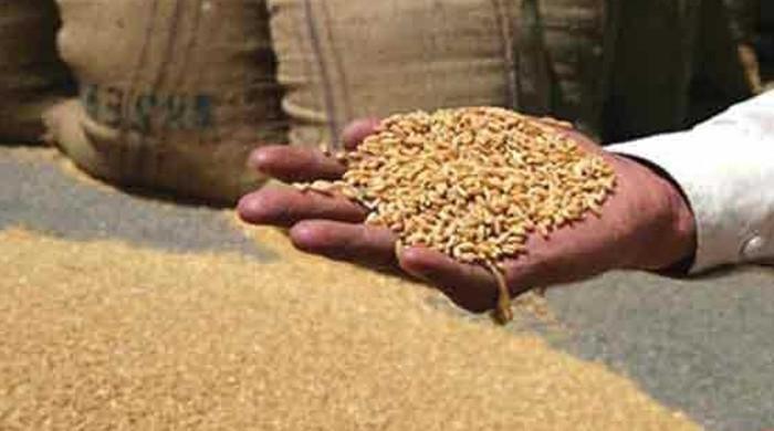 فلار ملز ایسوسی ایشن نے بجٹ میں گندم پر ٹیکس بڑھانےکی تجویز مستردکردی