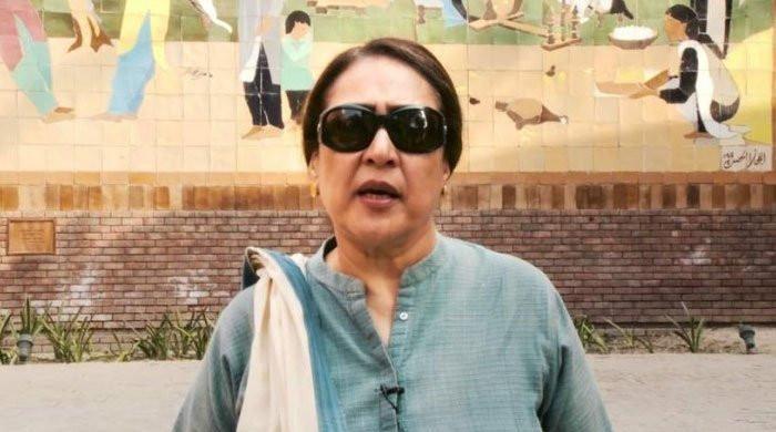 بینظیر کی سالگرہ پر اسمبلی میں بولنا چاہتی تھی، اجازت نہیں دی گئی، جگنو محسن