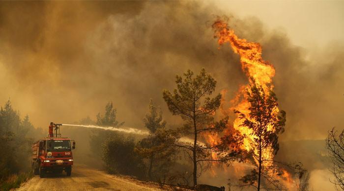 8 ہلاکتوں کے بعد بھی ترکی کے جنگلات میں لگی  آگ پر قابو نہیں پایا جاسکا