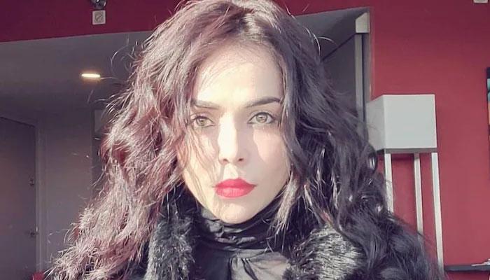 واردات کے 10 منٹ کو الفاظ میں نہیں بتا سکتی کیونکہ مجھے ڈر تھا کہ کہیں ڈاکو لوٹنے کے بعد میرا ریپ نہ کردیں، اداکارہ نکیتا— فوٹو:فائل
