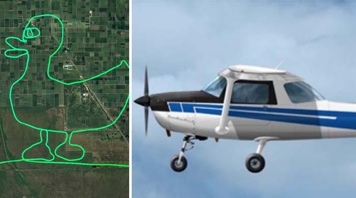 امریکی پائلٹ کی دلچسپ پرواز، فضا میں بطخ کا بچہ بنادیا