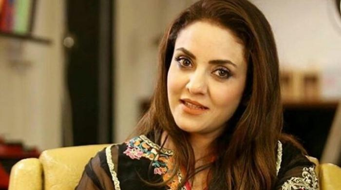 اداکارہ نادیہ خان سے سائبر فراڈ کرنے والا ملزم گرفتار