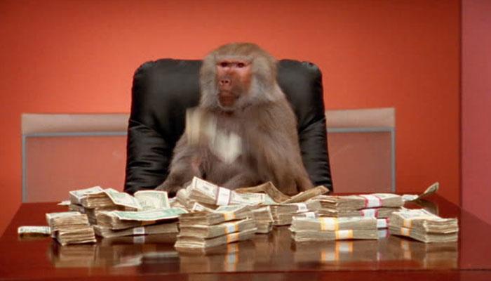 بندر نے رکشے میں سوار شخص کے ہاتھوں سے 2 لاکھ روپے چھین لیے —فوٹو: فائل