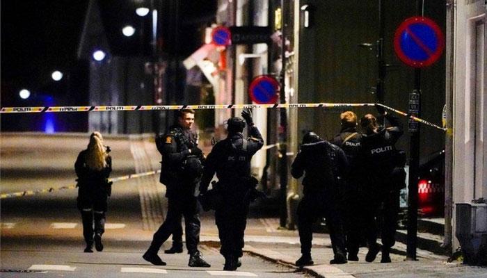 ناروے میں مسلح شخص نے تیر کمان سے حملہ کرکے 5 افراد کو ہلاک اور 2 کو زخمی کر دیا۔ —فوٹو: رائٹرز