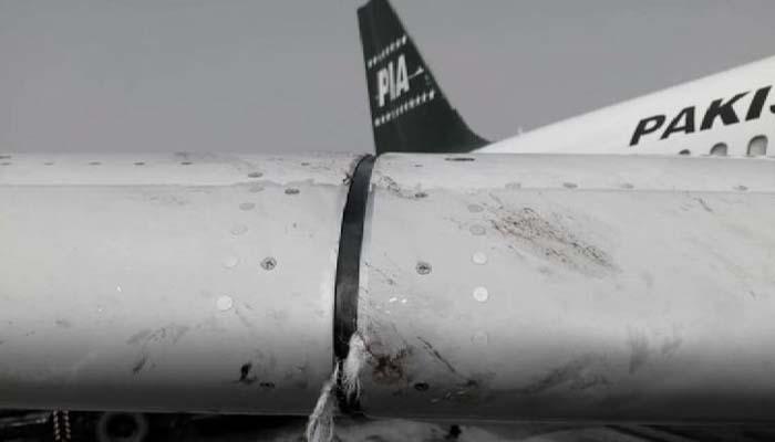 قومی ائیرلائن نے طیاروں سے پرندے ٹکرانے سے متعلق رپورٹ جاری کردی جو جنوری تا ستمبر 2021 تک کی ہے/ فائل فوٹو