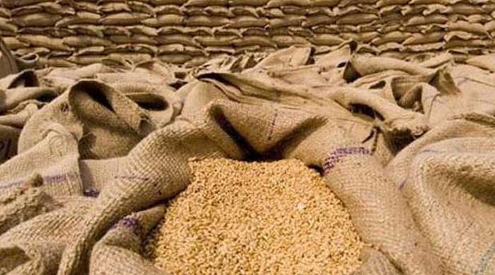 چینی کے بعد 90 ہزارٹن گندم کی درآمد کا ٹینڈر بھی منسوخ کردیا گیا