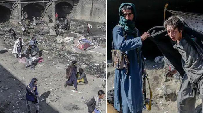 ویڈیو: طالبان نے نشے کے عادی افراد کی پکڑ دھکڑ شروع کردی