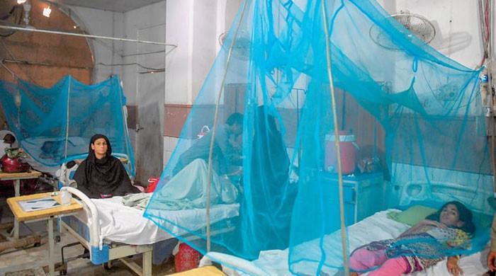 لاہور میں ڈینگی سے ایک اور ہلاکت، 350 سے زائد نئے مریض سامنے آگئے
